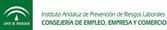 Institut Andalús de Prevenció de Riscos Laborals